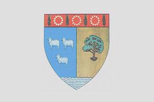Logo Teleorman